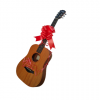 Gift vouchers for guitar or bass lessons